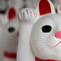 close up of white lucky cat statue with other white lucky cat statues surrounding