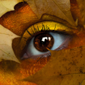 an eye with golden makeup, the face mostly hidden with brown-gold leaves